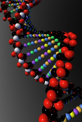 The Human Genome Project Dna_3is