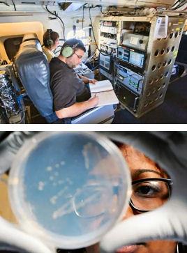 airborne_bacteria