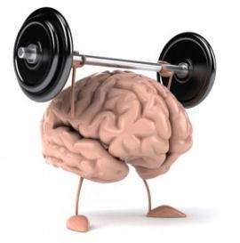 brain_train