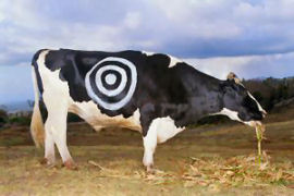 cow_target