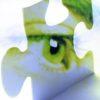 eye_puzzle