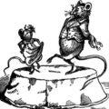 rats_dancing